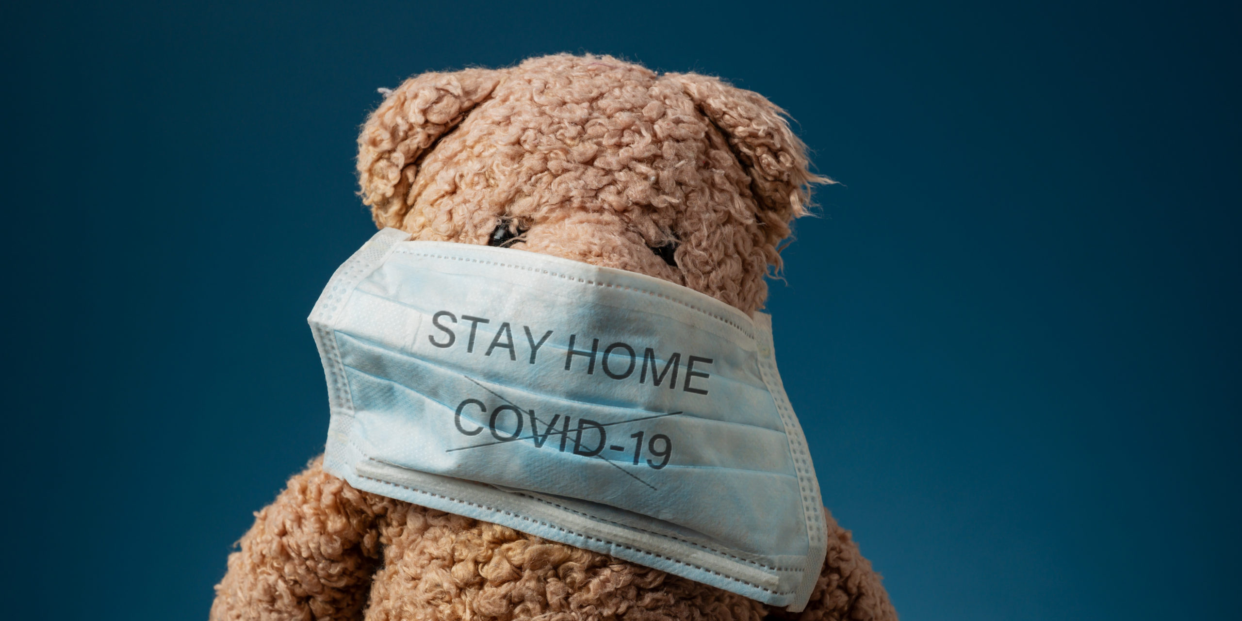 Teddy bear wearing protective medical mask with Stay Home sign and Covid 19 crossed.
